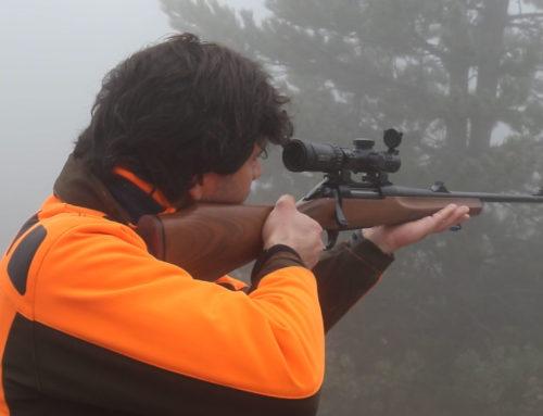 Come ci si prepara alla caccia al cinghiale?