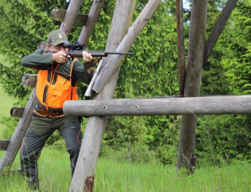 Qual'è il miglior equipaggiamento per la caccia al cinghiale?