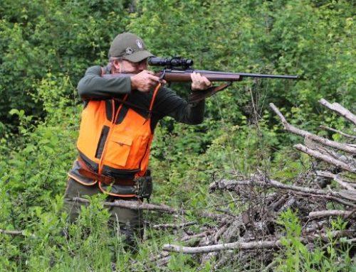 Qual è il miglior abbigliamento per la caccia al cinghiale?